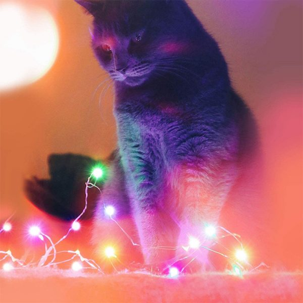 USB Interface Remote and APP Controlled LED Holiday String Lights_2
