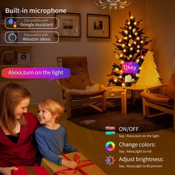 USB Interface Remote and APP Controlled LED Holiday String Lights_17