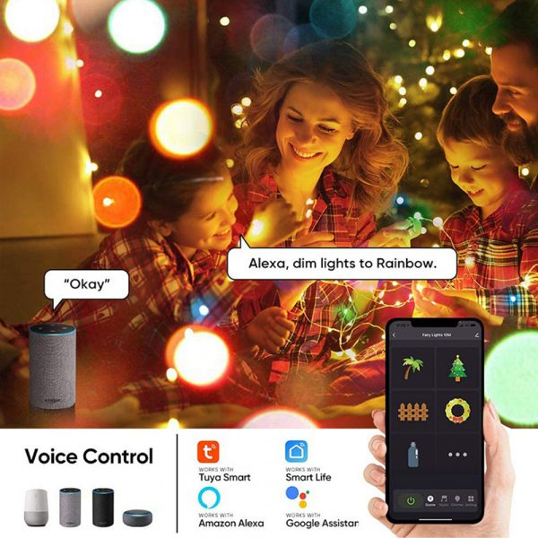 USB Interface Remote and APP Controlled LED Holiday String Lights_18